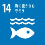 SDGs Goal.14「海の豊かさを守る」で出来ること